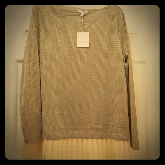 LC Lauren Conrad Tops - LC Lauren Conrad Shirt XL NWT